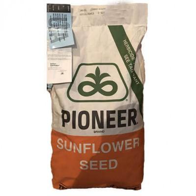 Посевной материал гибрид подсолнечника PIONEER P63LE10
